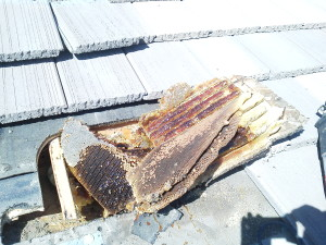 Artesia Bee Removal
