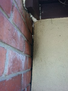 bees, bee removal orange county, orange county bee removal, beees in chimney